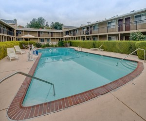 Hotel Rose Garden San Jose - Relax by our Pool